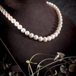 Collier perle d'eau douce